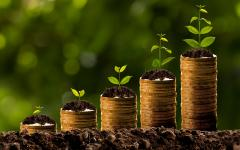 Greenwashing biggest challenge of ESG investing, say institutions