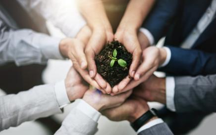 Major investment consultants launch net-zero project
