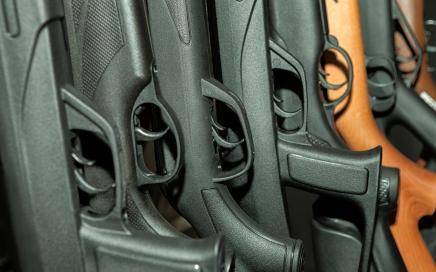 Institutional investors eye gun control